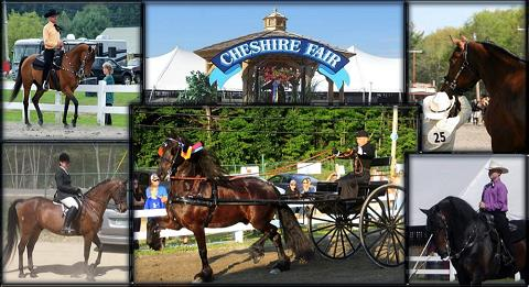The Cheshire Horse Show